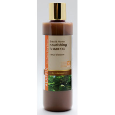 Coconut & Shea Daily Hydrating Shampoo