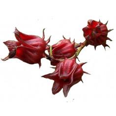 Fleurs d'hibiscus en poudre