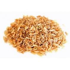Proteine de riz hydrolysées