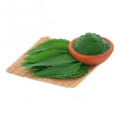 Poudre surfine de feuilles de neem
